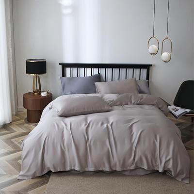 2020新款60S天丝纯色四件套 2.0m床单款四件套 浅灰银